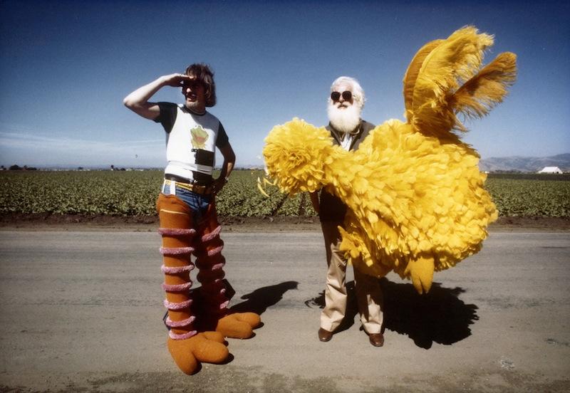 BigBirdHotDocs